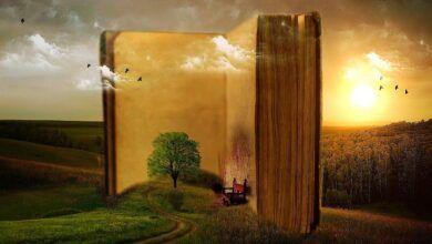 book 863418 1280