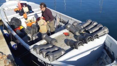 Elba 2 lavori cavi sottomarini