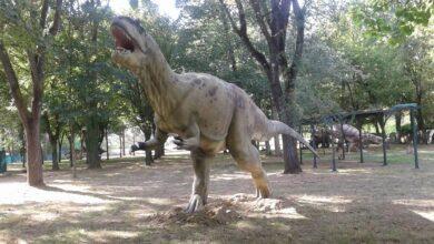 vicchio dinosauri